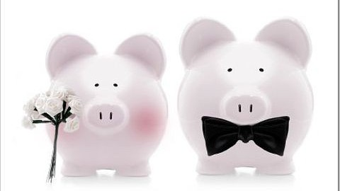 1358280288_7216_Wedding-Budget-Piggybank