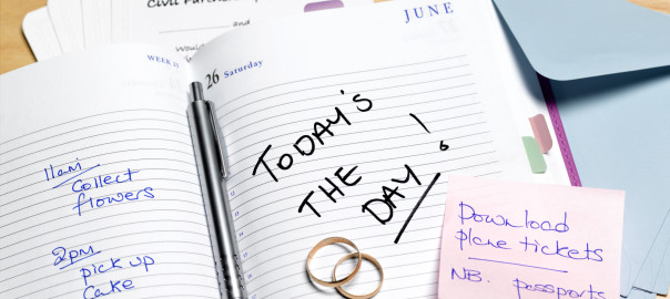 Civil partnership planning diary